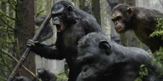 Dawn_of_the_Planet_of_the_Apes_Affrontement_Image_6