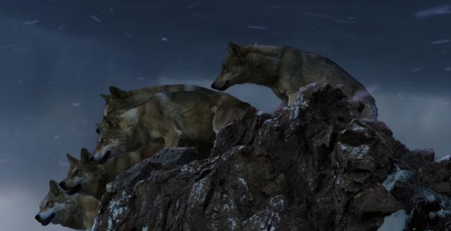 Wolf-Le-Dernier-Loup-Jean-Jacques-Annaud-Image-6
